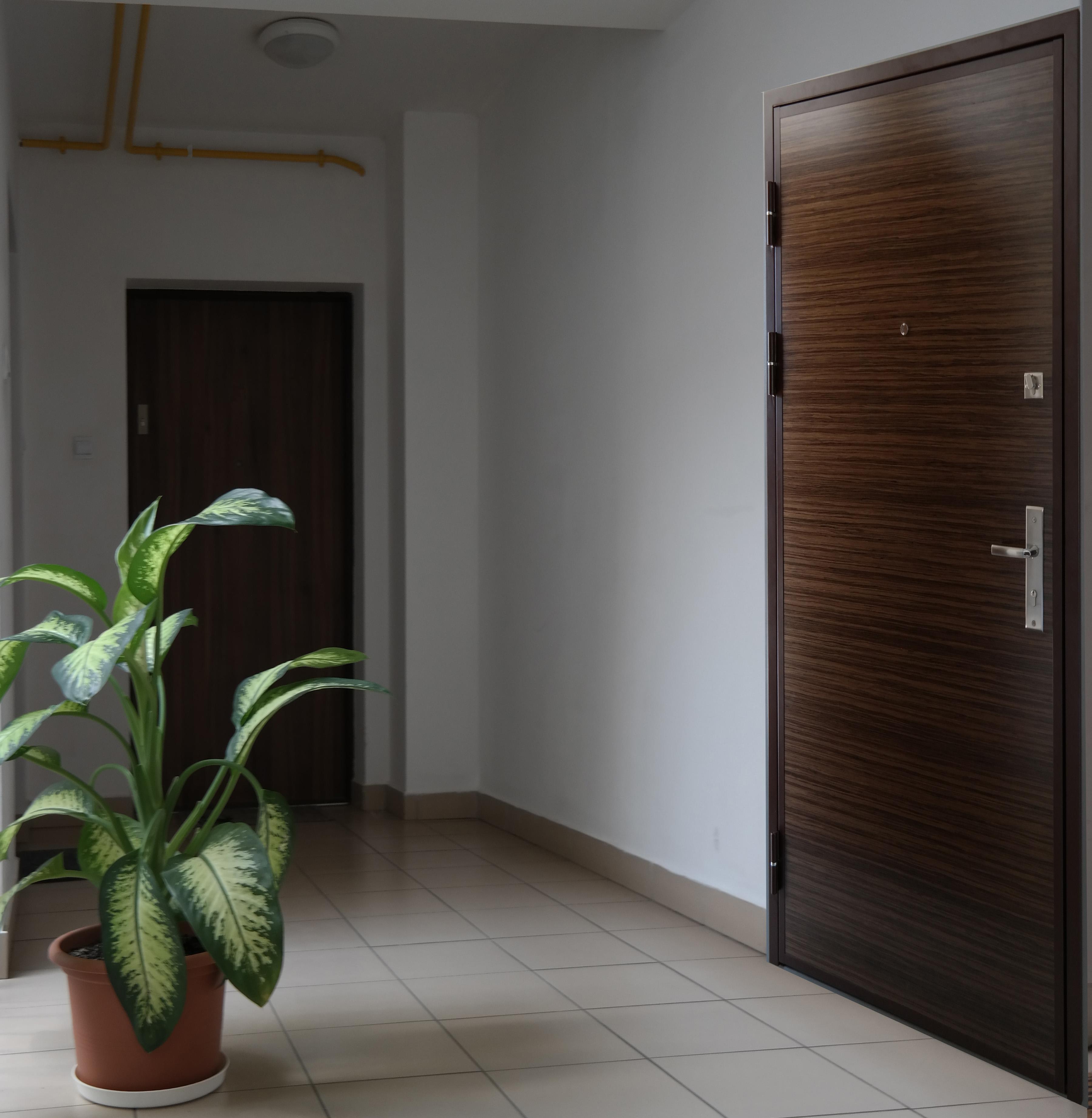 Aranżacja stalowych drzwi antywłamaniowych DL1.3